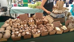 market mushrooms