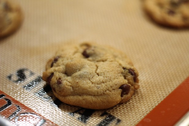 Tahini chocolate chip4